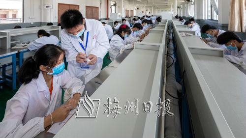 五华县技工学校义齿制造专业实操课室,学生正在进行义齿模型雕刻训练。