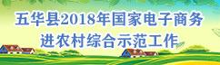 五华县2018年国家电子商务进农村综合示范工作